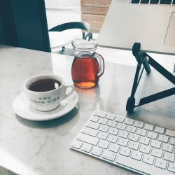 monitize-your-blog